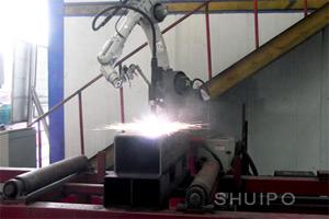 SHUIPO Cutting Robot